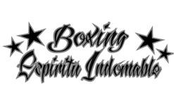 Boxing Espíritu Indomable